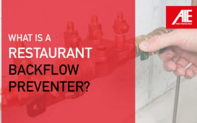 Commercial Backflow Preventer Inspections, Signs of Damage & Why It's Vital to Restaurant Water Systems